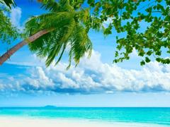 Пазлы онлайн. Картинка №163: Океанский горизонт . Размер картинки: 640х480