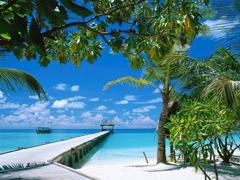 Пазлы онлайн. Картинка №205: Тропическая пристань . Размер картинки: 640х480