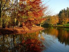 Пазлы онлайн. Картинка №22: Осенняя панорама . Размер картинки: 640х480