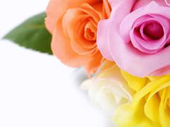 Пазлы онлайн. Картинка №428: Розовый сфетофор . Размер картинки: 640х480