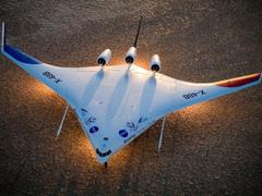 Пазлы онлайн. Картинка №434: Воздушный скат . Размер картинки: 640х480