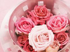 Пазлы онлайн. Картинка №606: Чаша роз . Размер картинки: 640х480