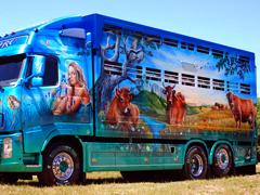 Пазлы онлайн. Картинка №870: Дикий запад на колёсах . Размер картинки: 640х480