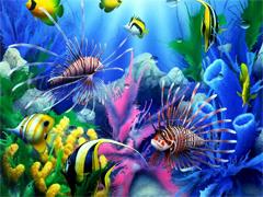 Пазлы онлайн. Картинка №980: Подводные будни . Размер картинки: 640х480