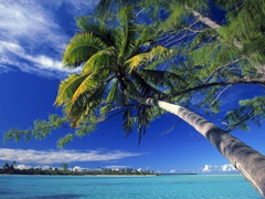 Пазлы онлайн. Картинка №177: На берегу океана . Размер картинки: 640х480