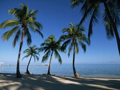 Пазлы онлайн. Картинка №18: Пляжный рай . Размер картинки: 800х600