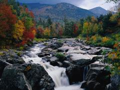 Пазлы онлайн. Картинка №20: Водопад . Размер картинки: 640х480