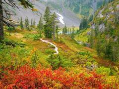 Пазлы онлайн. Картинка №223: Осенняя гора . Размер картинки: 640х480