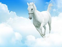 Пазлы онлайн. Картинка №235: Выше облаков . Размер картинки: 640х480