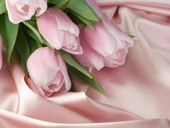 Пазлы онлайн. Картинка №260: Кремовые розы . Размер картинки: 640х480