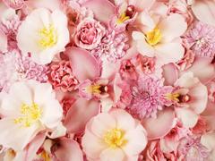 Пазлы онлайн. Картинка №466: Розовое море . Размер картинки: 640х480