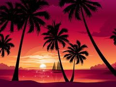 Пазлы онлайн. Картинка №499: Вечерние тропики . Размер картинки: 640х480