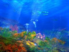Пазлы онлайн. Картинка №53: Подводный мир . Размер картинки: 640х480