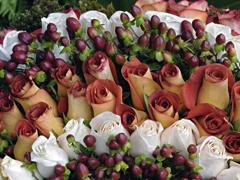 Пазлы онлайн. Картинка №648: Шоколадные розы . Размер картинки: 640х480
