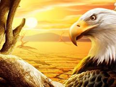 Пазлы онлайн. Картинка №679: Пустынный орел . Размер картинки: 640х480