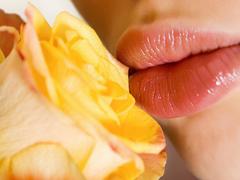 Пазлы онлайн. Картинка №774: Розовый поцелуй . Размер картинки: 640х480