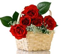 Пазлы онлайн. Картинка №810: Корзина роз . Размер картинки: 640х480
