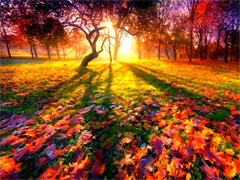 Пазлы онлайн. Картинка №850: Красивая осень . Размер картинки: 640х480