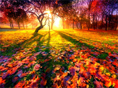 Пазлы онлайн. Картинка №876: Золотая осень . Размер картинки: 640х480